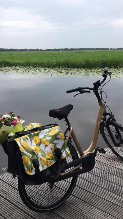 fiets met tulpentas.JPG