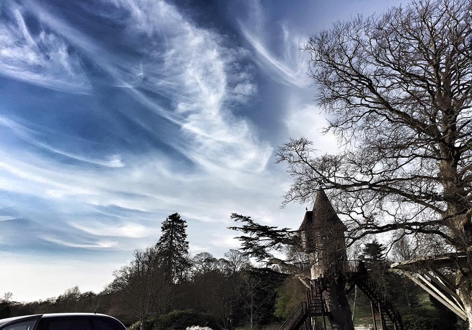 Rippled Sky over Tree House
