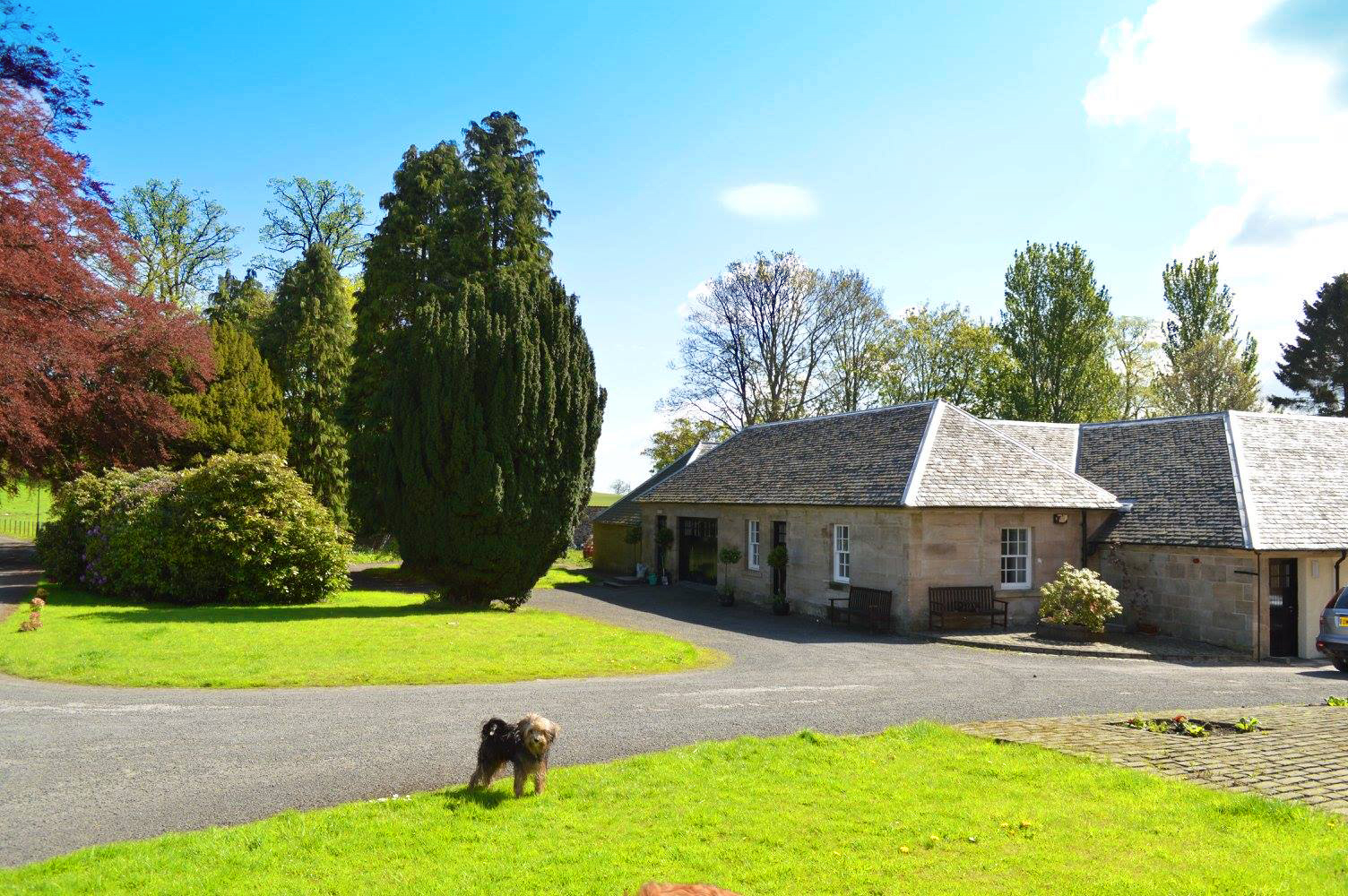 Side Annexe Grounds