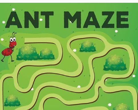 Maze L1-2