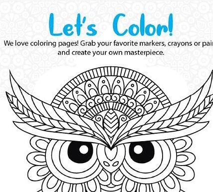 Color Fun L2-3