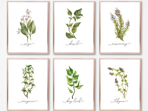 HERB GALLERY WALL SET + FREE LILIAC PRINTS