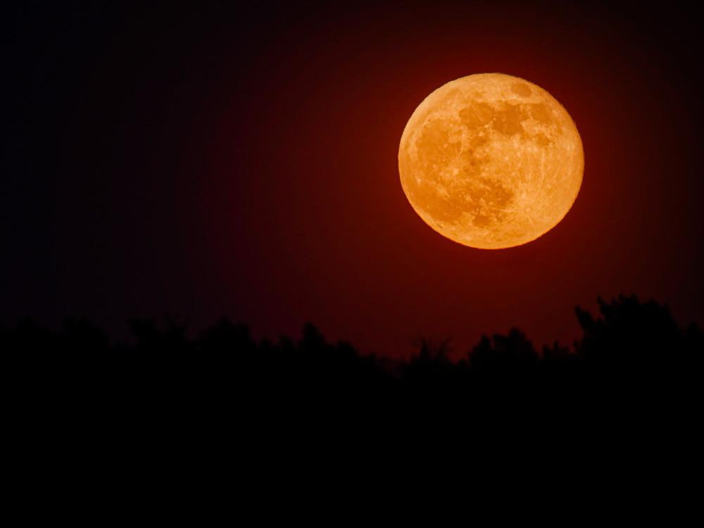 Supermond ist aufgegangen und leuchtet orange am Himmel