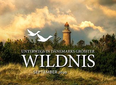 Dänemark_2020_cover_web.jpg