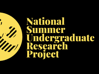 NSURP Summer project presentations go live
