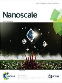 nanoscale.jpg