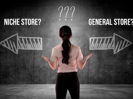 Shopify: Niche Store vs General Store?