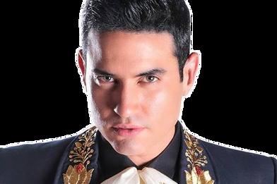 Luis Alberto Fernandez   El Charro Dorado