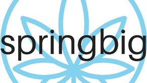 springbig Launches First D2C Brand Platform for the Cannabis Industry
