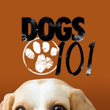 dogs101.jpg