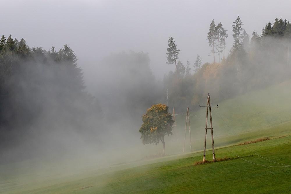 An der Nebelobergrenze