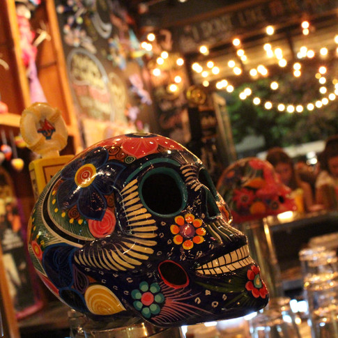blue colorful skull