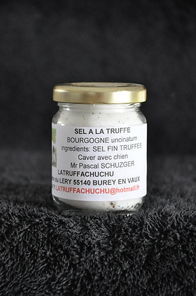 sel truffe bourgogne (Tuber Uncinatum)