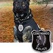 National Police Dog Foundation K9 - Choper.jpg