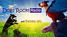 Dogs-Rock-Radio-209x115.jpg