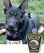 National Police Dog Foundation K9 - Rush.jpg