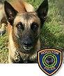 National Police Dog Foundation K9 - Rony.jpg
