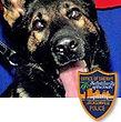 National Police Dog Foundation K9 - Fang.jpg
