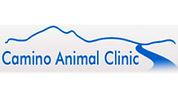 Camino-Logo-Blue.jpg