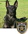 National Police Dog Foundation K9 - Cigo.jpg