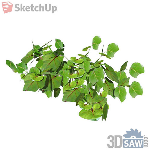 Sketchup Plants - Interior Plants - SK-0000006