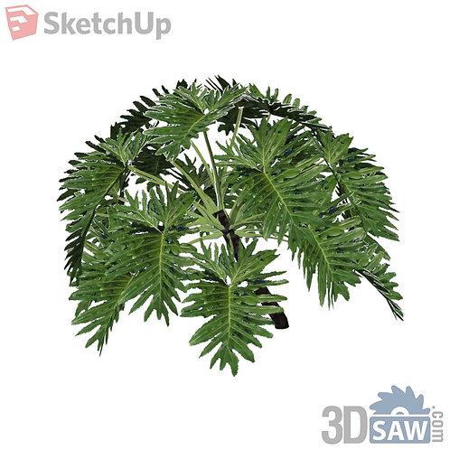 Sketchup Plants - Interior Plants - SK-0000007