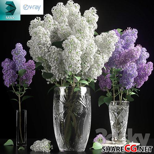3ds Max - Flower Vase - MX-0000040