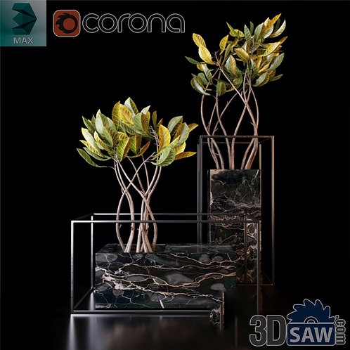 Interior Plants - 3ds Max Croton Trees Models - Corona - MX-0000182
