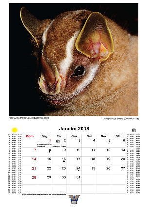 calendario_Sbeq_2018_A3_Página_02.jpg