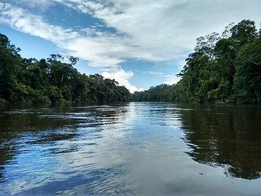 Rio_Araguari_-_Floresta_Nacional_do_Amap