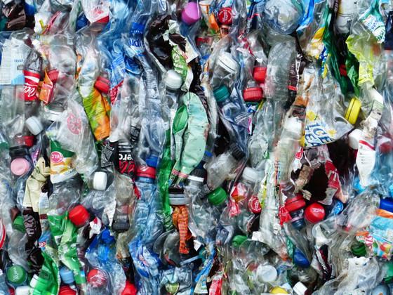 Plastic Free July.