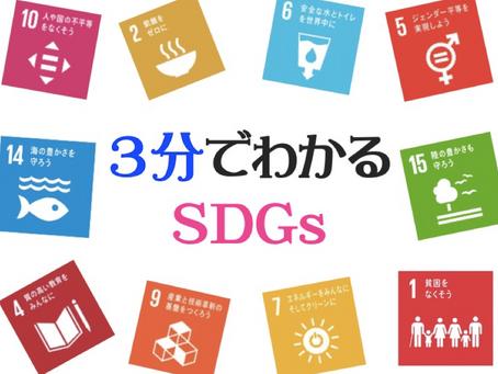 SDGsとは?[3分でわかるSDGs]