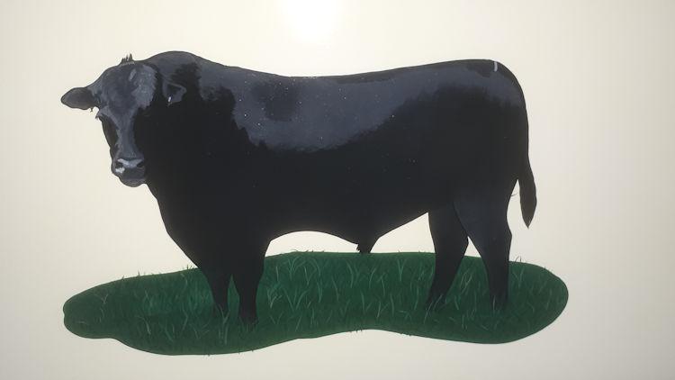 Thornes Bull.jpg