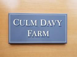 Culm Davy