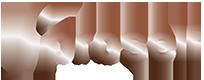 logo_proself.png