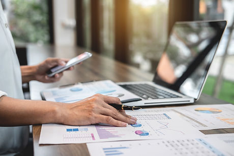 Business woman accountant working audit