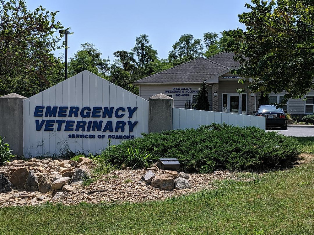The current location of Emergency Veterinary Services