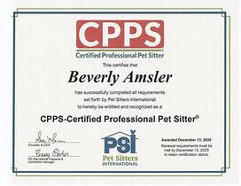 CPPS certificate.jpg