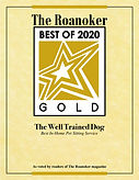 2020 award2.jpg