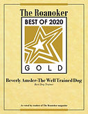 2020 award1.jpg