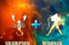 skorpion-wodnik-768x576.jpg