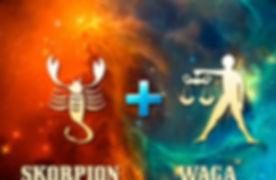 skorpion-waga-768x576.jpg
