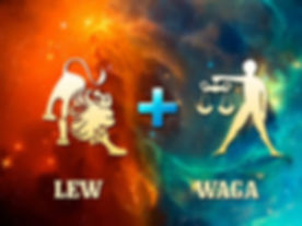 lew-waga-768x576.jpg