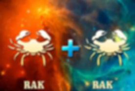 rak-rak-768x576.jpg