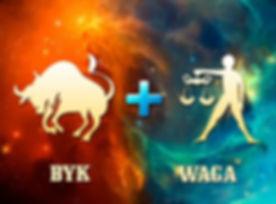 byk-waga-768x576.jpg