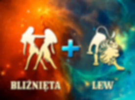 bliznieta-lew-768x576.jpg