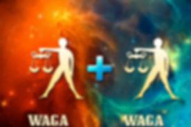 waga-waga-768x576.jpg