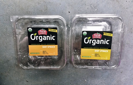 Recycle salad containers