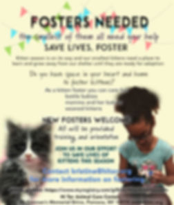 Foster Kittens Flyer .jpg
