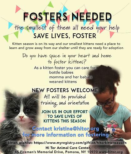 Foster Kittens Flyer .jpg